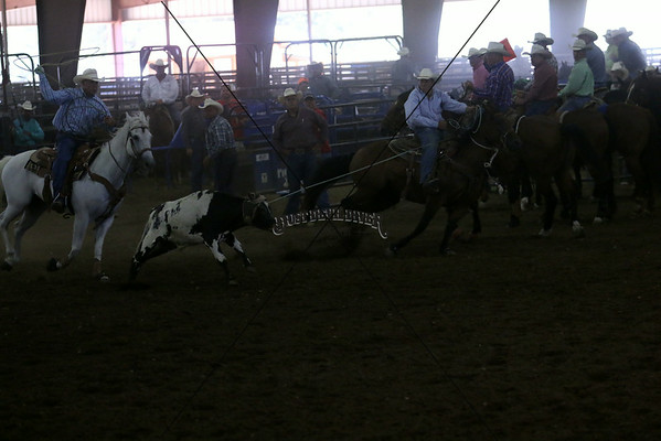Team Roping Saturday
