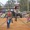 Rodeo : 15 galleries with 8134 photos