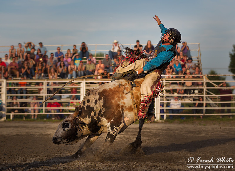 2016 Rodeo action #3