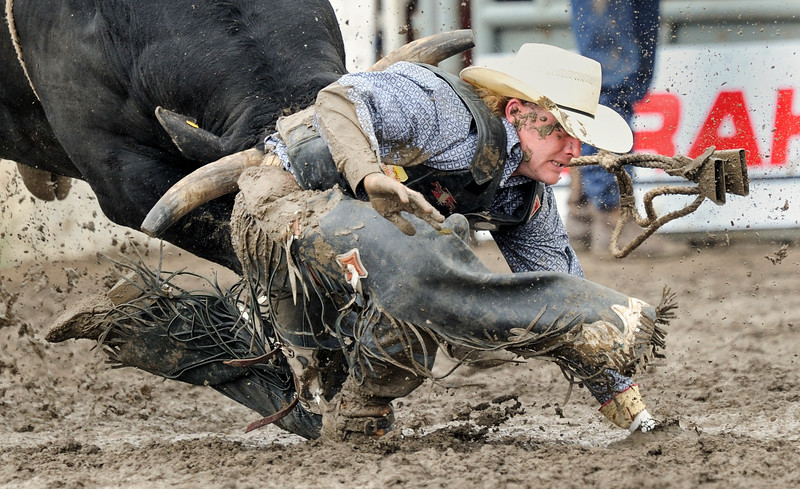 High River, Alta_ June 24, 2012 _  Biggar problems for Justin _ Justin Laventure of Biggar, SK gets bucked off by Shot Glass who goes after the Biggar cowboy in the muddy infield during the bull riding event at the rodeo during Guy Weadick Days in High River , Alta.(Mike Sturk photo)