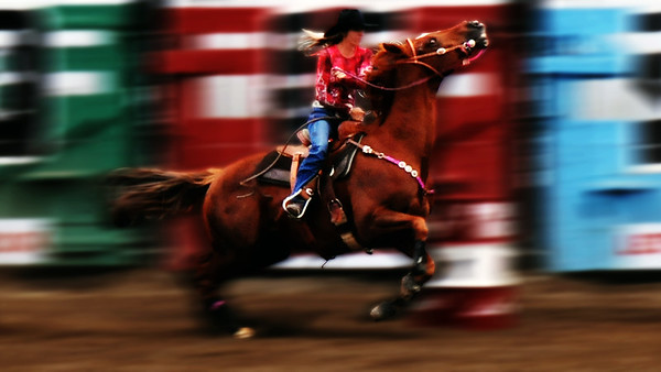 barrel racing horse