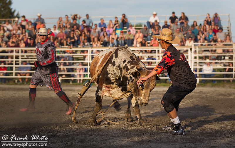 2016 Rodeo action #2