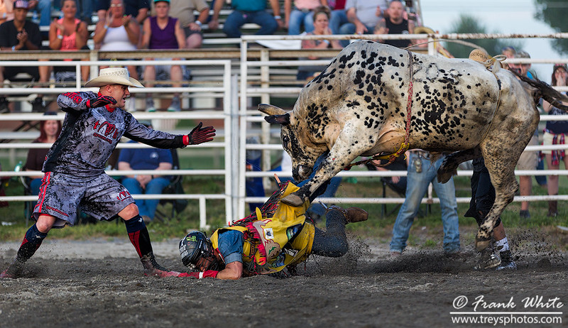 2016 Rodeo action #8