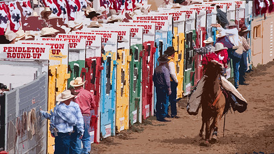 Roundup Sept 18 2010 bucking shoots cutout