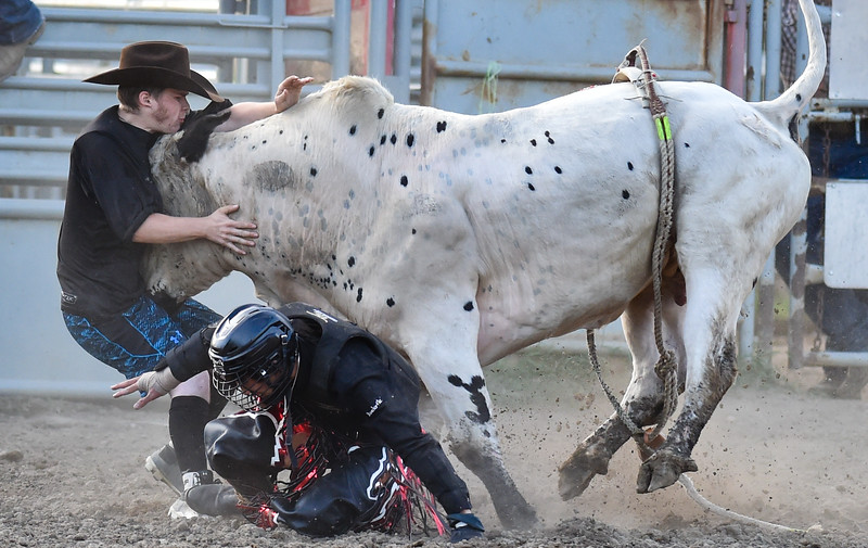 Nanton, Alta - July 12, 2019 - Doing his job by distracting the bull from its downed rider (Edgee Siano), bull fighter Dawson Nelson takes a hit from the bull and is knocked to the ground during the bull riding event at the second of five Nanton Nite Rodeos this summer. Both men were unharmed in the incident. (Mike Sturk photo)