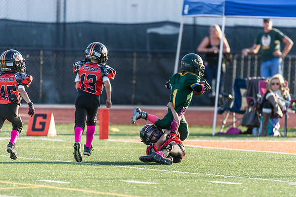 Roseville Jr Tigers Mighty Mites vs Placer 10-17-15