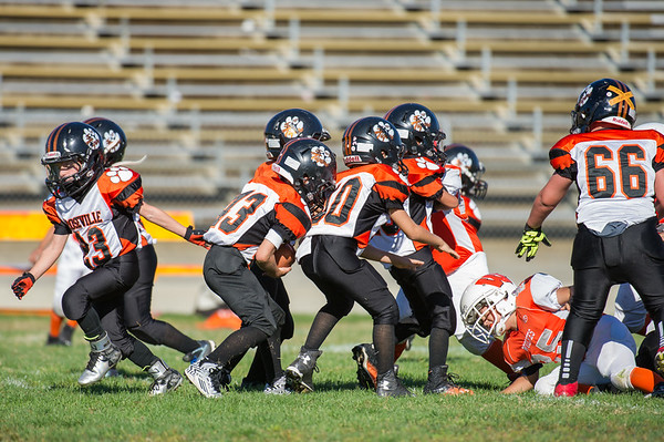 Roseville Jr Tigers Mighty Mites vs Woodland 9-19-15