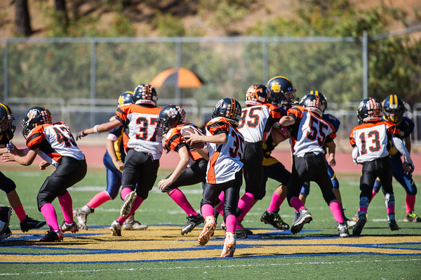 Roseville Jr Tigers Pee Wee vs Nevada Union 10-10-15