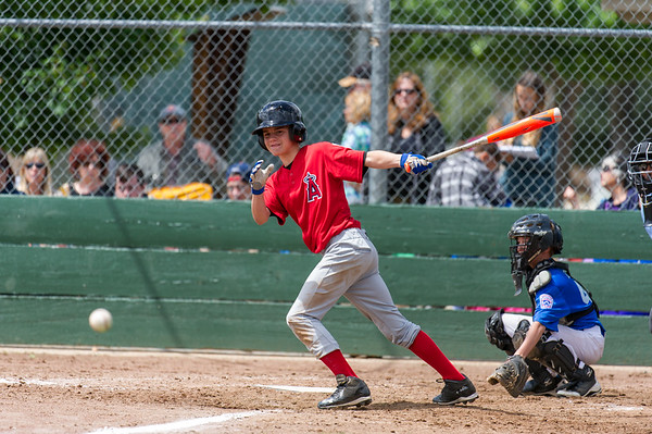 Roseville West Little League Jr. Angels vs Dodgers 5-21-16