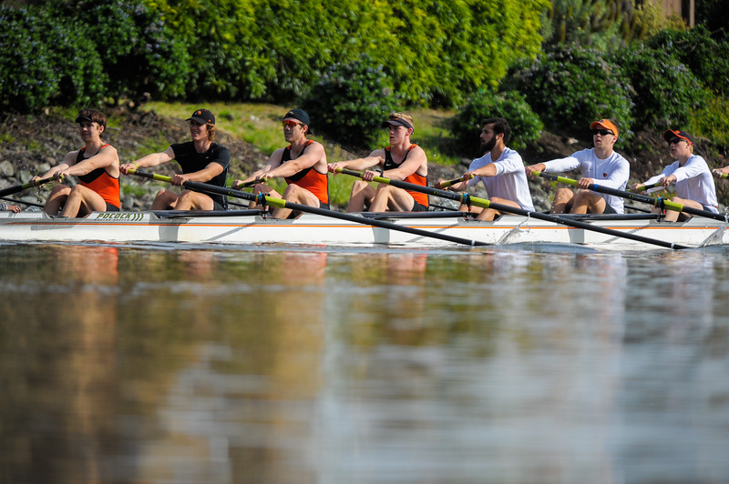 OSU Men's Rowing at the 2017 Stanford Invitational Row, 2017.