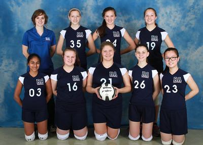 Royalmont Academy 2014 Teams