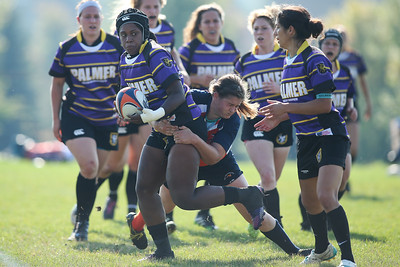 D2 Rugby: Amazons vs Palmer
