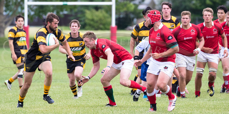 Druids Mens Premiers vs Hornets June 24