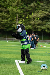 Utah Warriors at Seattle Seawolves Week 5 2018