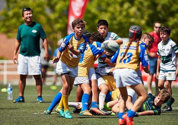 (Sub12) - CRC Pozuelo vs Tasman Boadilla: 50-15