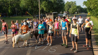 Run with the Horses 2018