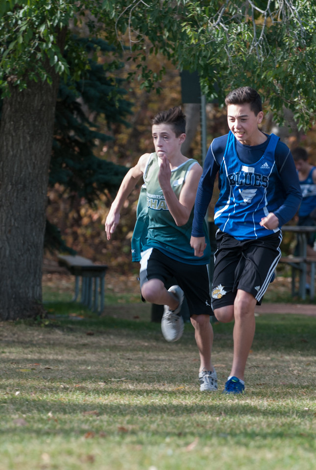 X-Country_2014_City