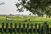 In het landelijke Elverdinge op een boogscheut van Ieper - 5de Kermisloop - Elverdinge - West-Vlaanderen - België