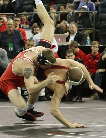 Scarlet Knights over Davidson, 49-3,  in MSG, Dec 21, 2014