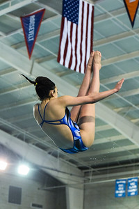 The Texas UIL District 26-6A & 25-6A Diving Championships concluded at Josh Davis Natatorium in San Antonio, Texas 28Jan17. Gallery http://smu.gs/2k6bIc0