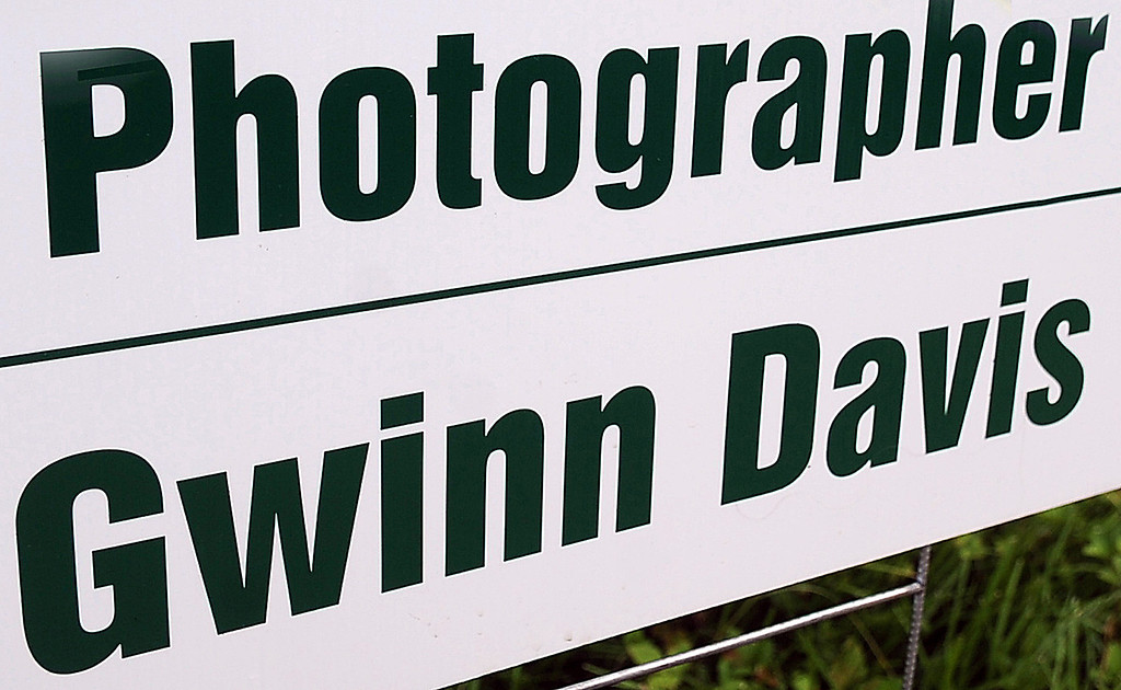 GWINN DAVIS PHOTOS