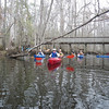 Launching on Wadboo Creek with the Lowcountry Paddlers
