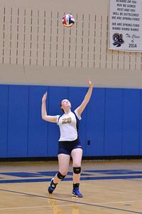 Springford Volleyball vs Bishop Shanahan