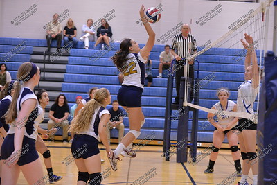 Springford Volleyball v Kennett