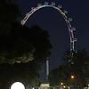 Singapore, F1, night, race, Flyer