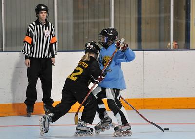 SGAA Hockey 2009