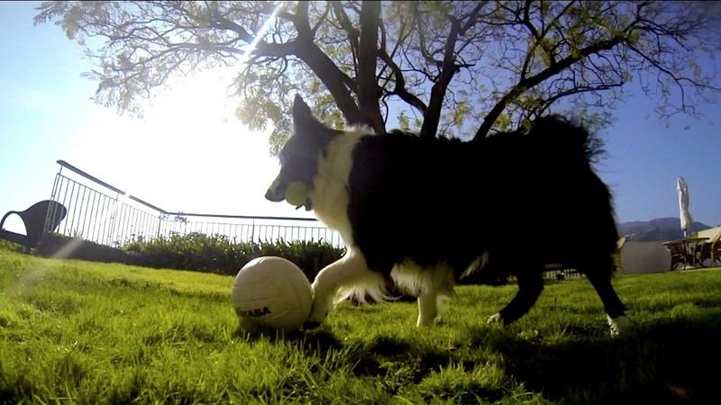 Rocky Soccer