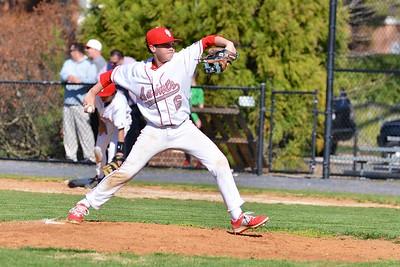 STC Bulldog Baseball 2015