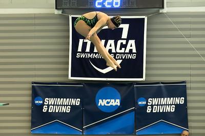 17 02 24-24 NCAA Div 3 Diving Regionals-18