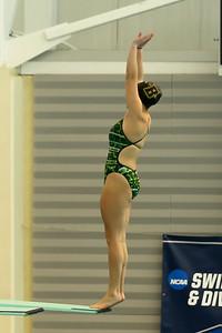 17 02 24-24 NCAA Div 3 Diving Regionals-27