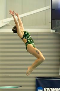 17 02 24-24 NCAA Div 3 Diving Regionals-148