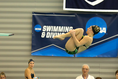 17 02 24-24 NCAA Div 3 Diving Regionals-71