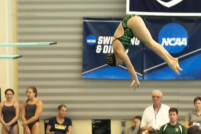 17 02 24-24 NCAA Div 3 Diving Regionals-6