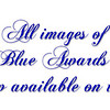 blue awards 2008