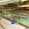 gdsSwimming_12012017_001