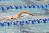 ODAC SWIMMING CHAMPIONSHIP (WL) 02-2015_024FIXED