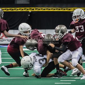 20130608_SYAFL_Arena_Bowl_PeeWee_division_1006