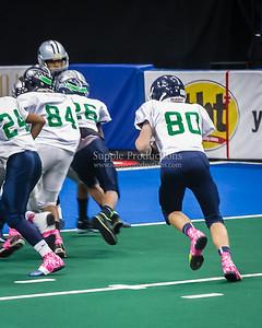 20130608_SYAFL_Arena_Bowl_Junior_division_1007