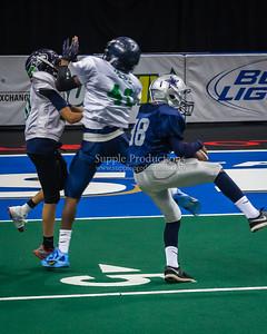 20130608_SYAFL_Arena_Bowl_Junior_division_1041
