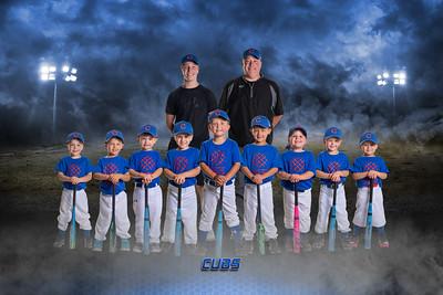4U Cubs