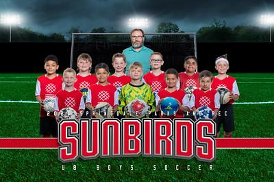 Sunbirds
