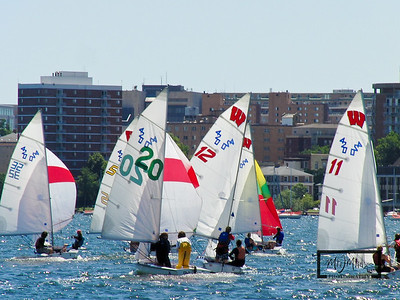 Wisconsin Sailing Team on Lake Mendota  © Copyright m2 Photography - Michael J. Mikkelson 2009. All Rights Reserved. Images can not be used without permission.