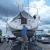 Jumbie Dry Dock Back