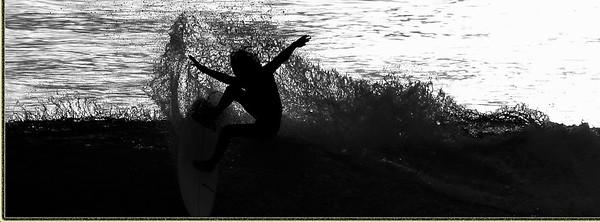 SURFER 2016