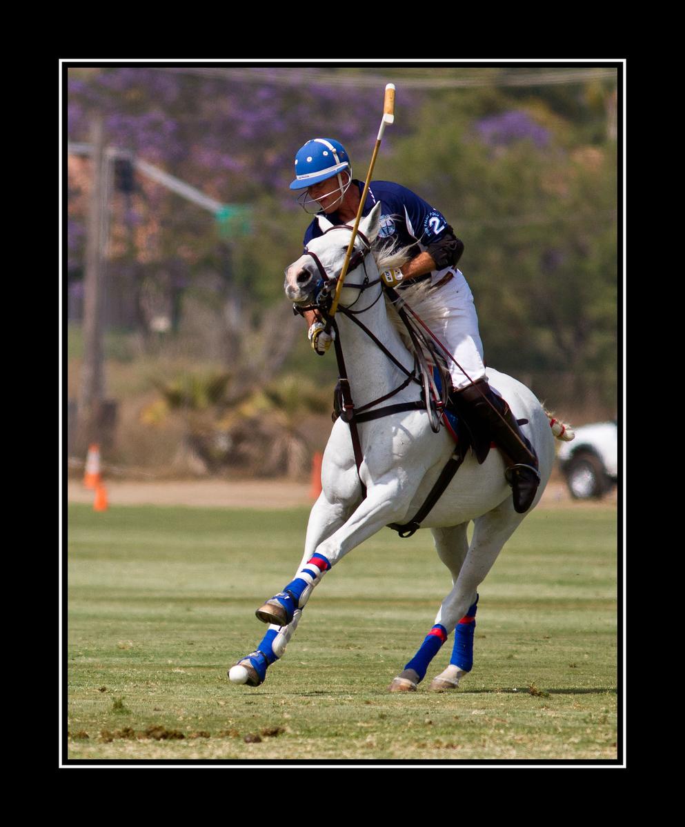 IMAGE: https://photos.smugmug.com/Sports/San-Diego-Polo-Club-Del-Mar/i-pJSxsf9/0/3a1cf9c2/X3/Polo%20Match%20Del%20Mar_1708_edited-1-X3.jpg