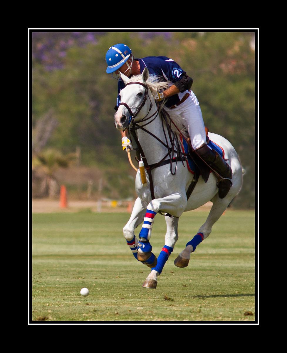 IMAGE: https://photos.smugmug.com/Sports/San-Diego-Polo-Club-Del-Mar/i-tQZcDm4/0/e028fcfd/X3/Polo%20Match%20Del%20Mar_1709_edited-1-X3.jpg